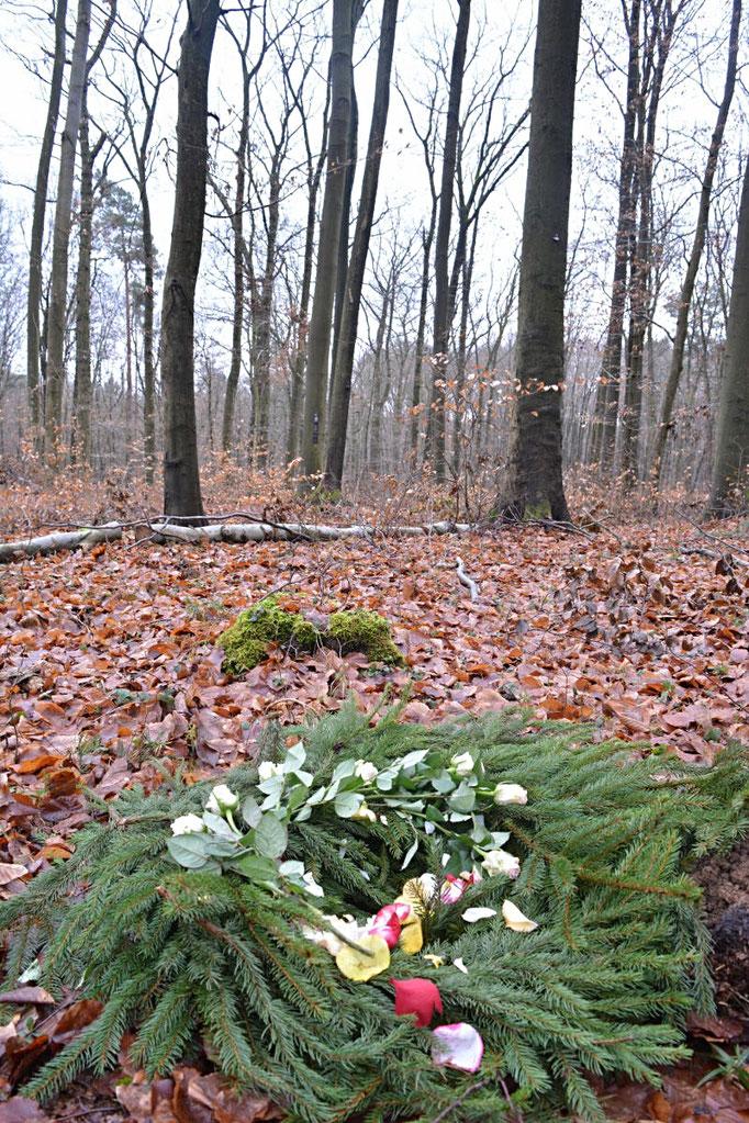 Beispielgrab Ruheforst Eberswalde im Herbst
