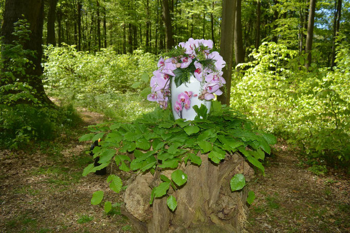 Trauerfeier im Ruheforst Eberswalde