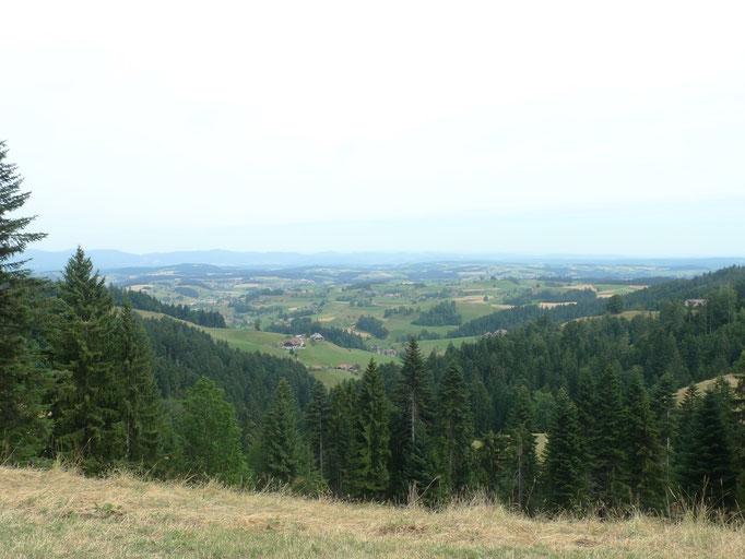 Blick oberhalb Kipferweidli ins Mittelland