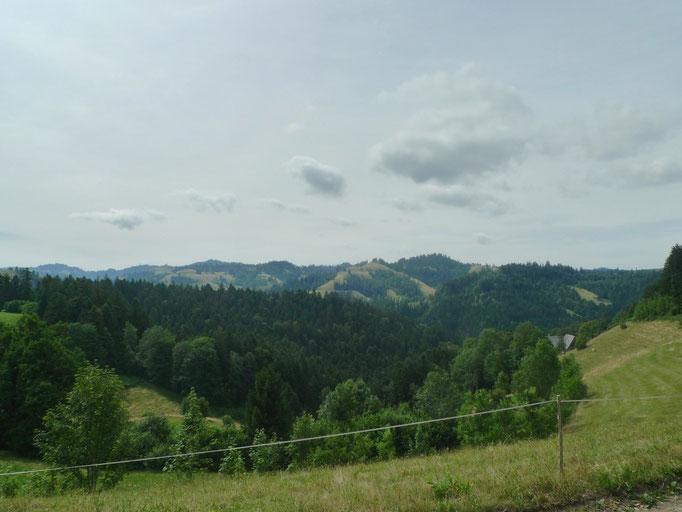 Blick über das Hornbachtal