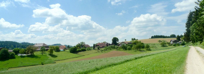 Blick auf Balzenwil