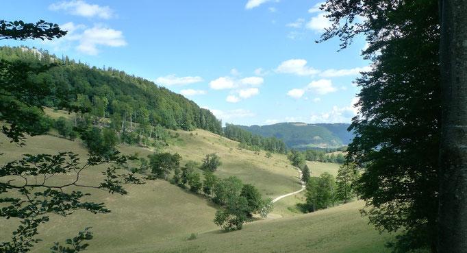 Blick vom Hochschürze Richtung Hintere Schmidenmatt, im Hintergrund der Brunnersberg
