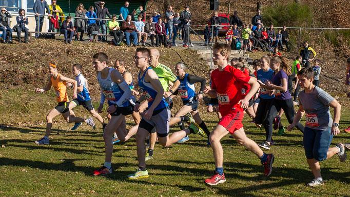 Foto:  SV Gerolstein