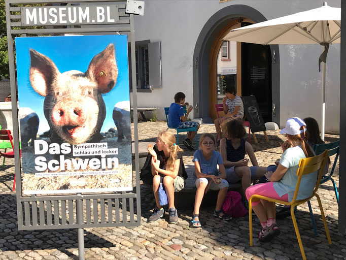 """Jugend-Naturschutzgruppe Rheinfelden Wendehals Besuch der Ausstellung """"Schwein"""" im Museum Baselland, Liestal"""
