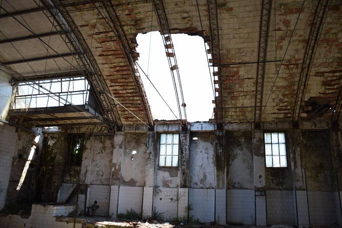 EX Fabbrica CIRIO squarci sulla volta interna di un capannone - 2016