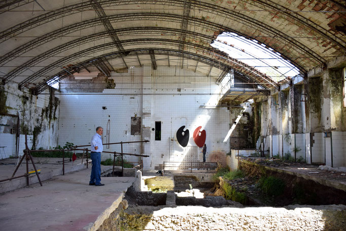 Angelo Michele Risi davanti agli scavi del Santuario si SANCTA VENERA di Paestum - 2016