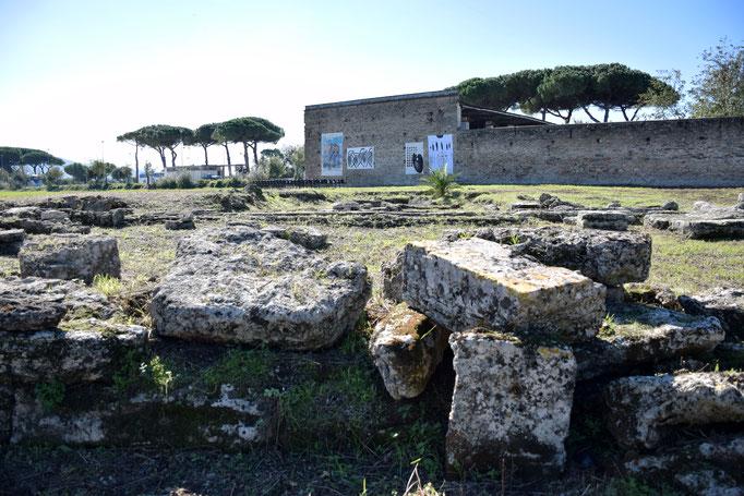 Panoramica del santuario e della ex fabbrica CIRIO di Paestum - 2016