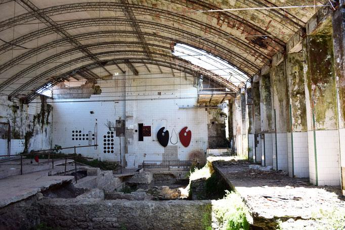 Gli scavi mai completati all'interrno della EX Fabbrica CIRIO di Paestum con  infondo sulle pareti le istallazioni di A. M. Risi - 2016