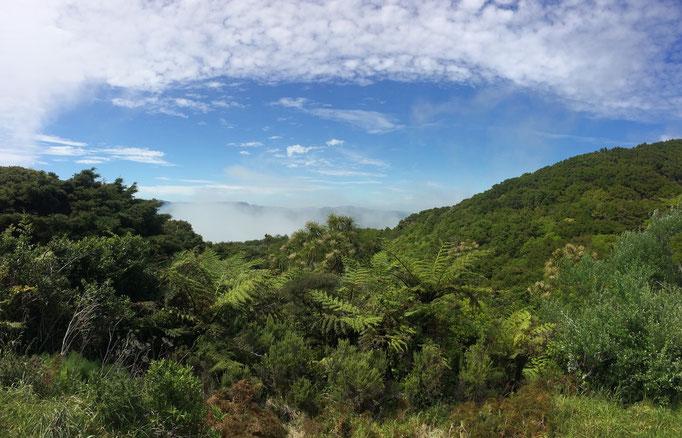 East Cape