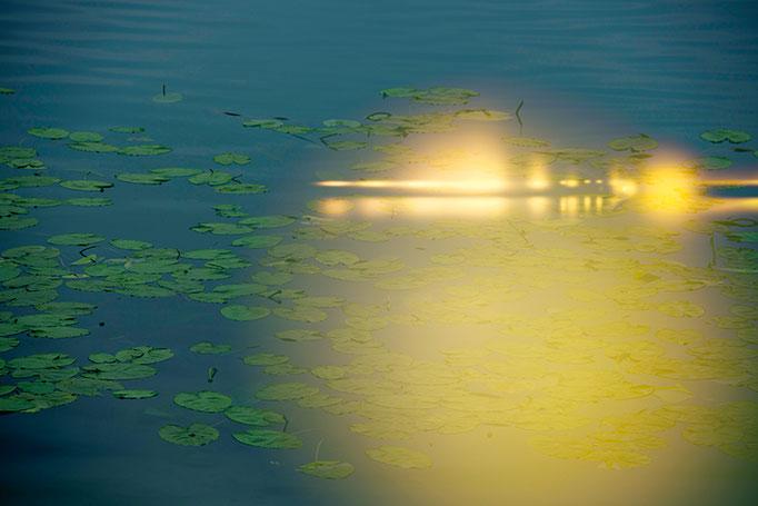LIGHT INCIDENCE VIII // #099 // 2013