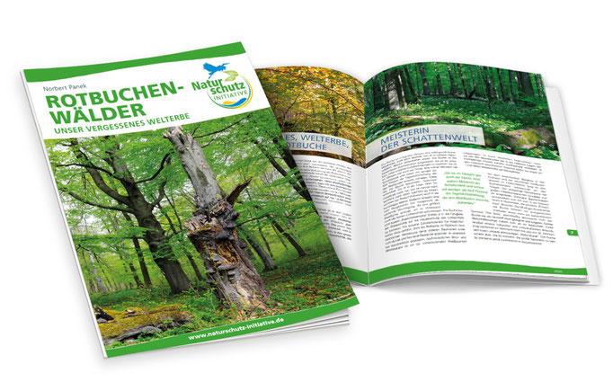 w-Publikation-Rotbuchenwaelder-naturschutzinitiative-ev-grafik-thielen