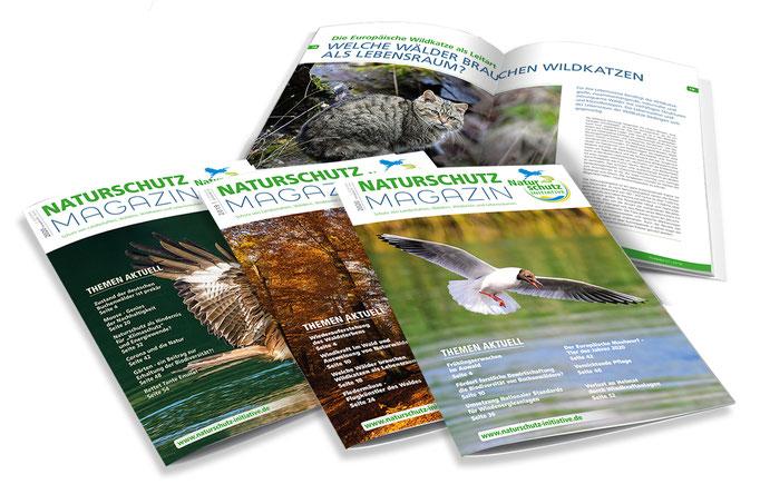 w-magazin-naturschutzinitiative-ev-grafik-thielen