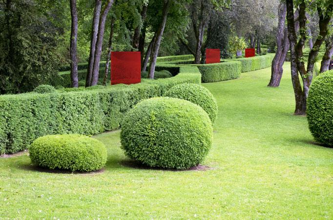 Glasstelen am Buchsbaum im Garten freistehend ohne Rahmen