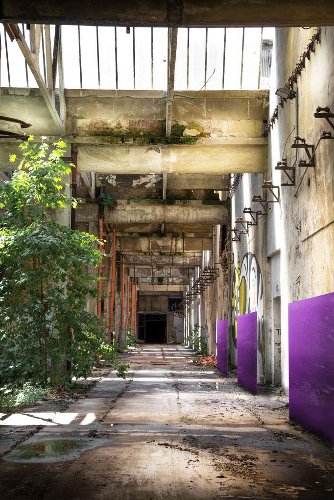 Knumox Glaselement in einer Industriefläche freistehend lila