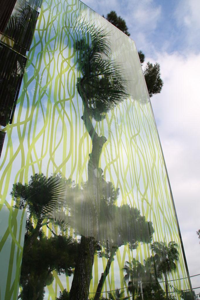 Knumox Glaselement im Garten mit Palme