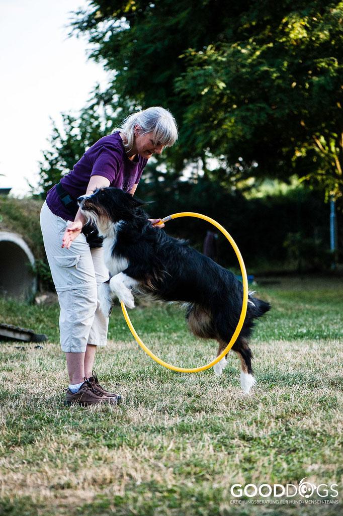 Hundeschule GOOD DOGS - Corssdogging - Spaß mit dem Hund - Durch einen Reifen hübpfen