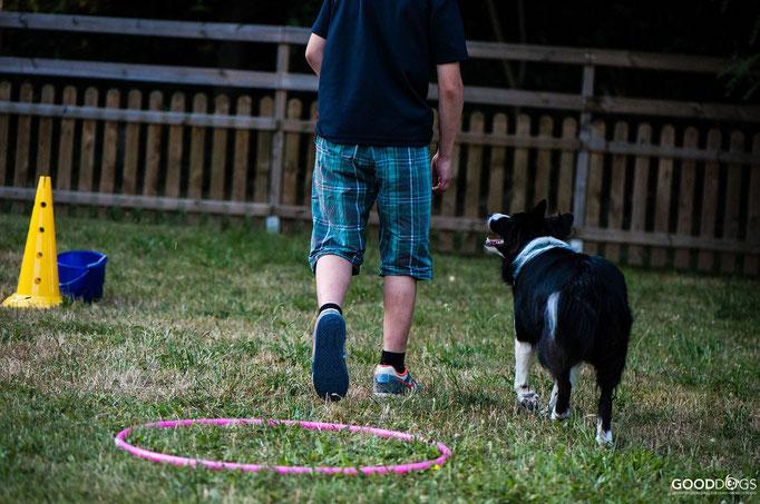 Hundeschule GOOD DOGS - Corssdogging - Spaß mit dem Hund - Dem Menschen folgen