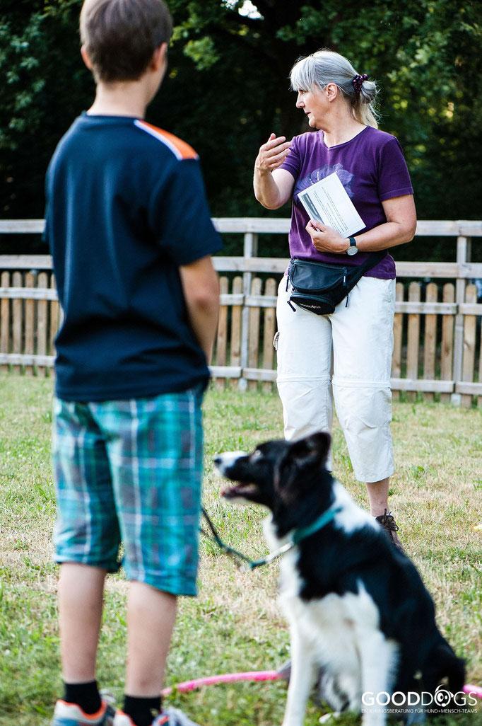 Hundeschule GOOD DOGS - Corssdogging - Spaß mit dem Hund - Reifenübung