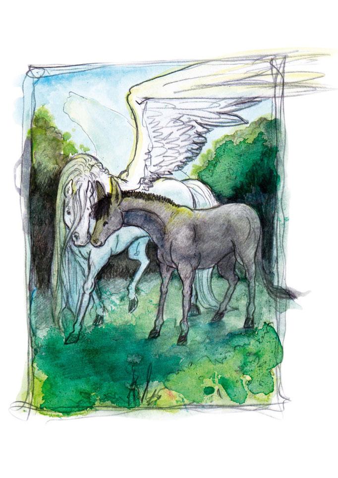 Jicha und der Pegasus