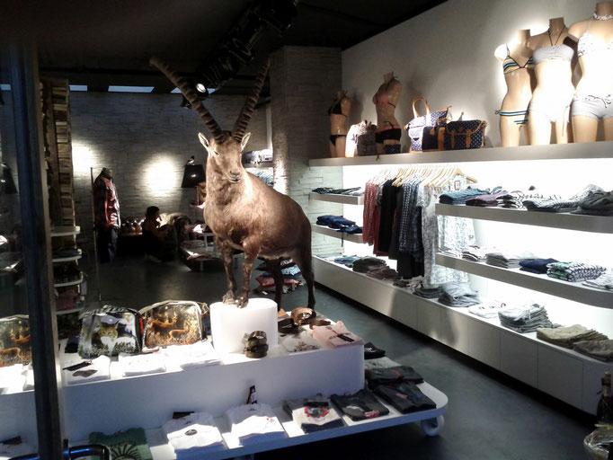 Ladenmobiliar Alprausch Shop Scuol