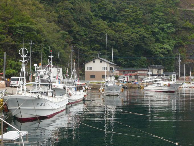 他の漁船も対岸からロープ張ります