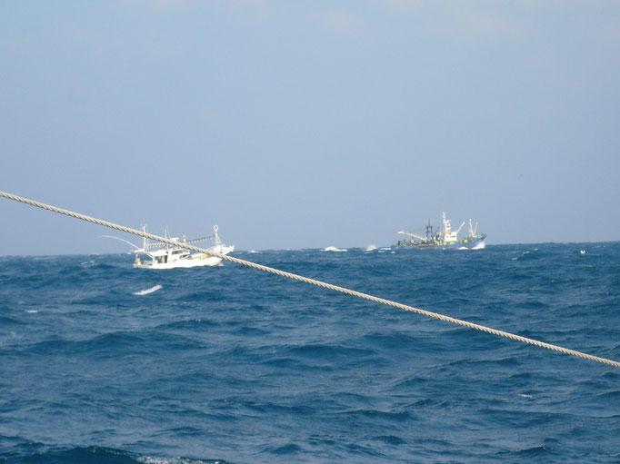 1月6日韓国の手繰り船 対馬近海まで来てもいいのかな