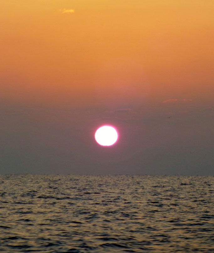 2月15日久しぶりの凪 でも昼~南西の風10m 予定があり午前中で帰港へ