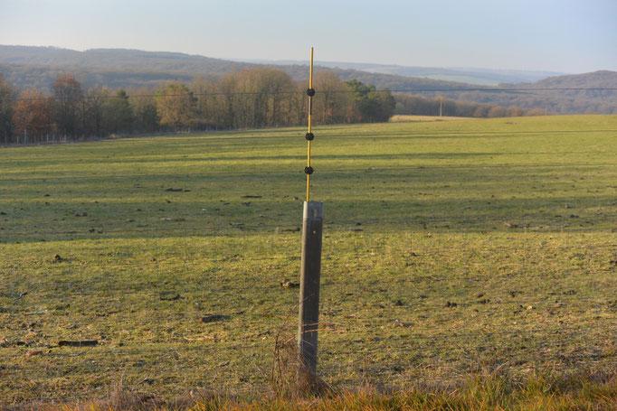 Renforcement d'une clôture existante : fixation de piquets en fibre de verre sur des poteaux en acier