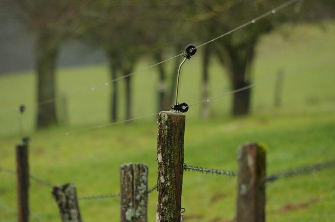 Clôture renforcée avec 2 fils électriques sur le dessus de la clôture existante