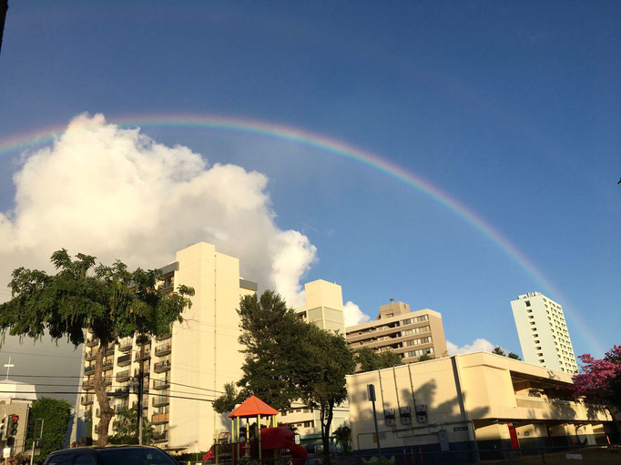 aloha_chappyさん ハワイから…