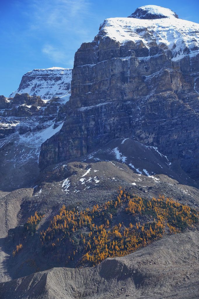 Plain of six glaciers