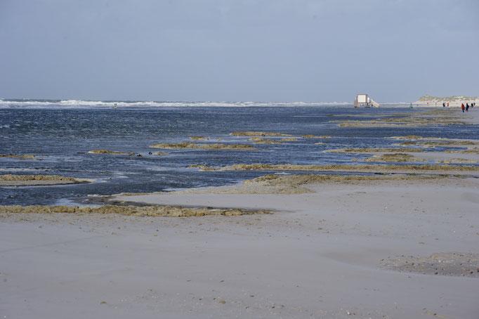 bei Hochwasser am Strand