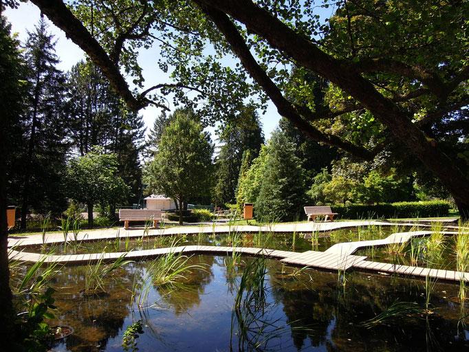 Un bassin du Parc Fenestre