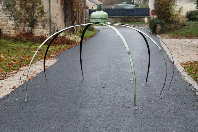 Grande arachnoGaz © Michel LAURENT (MichL)