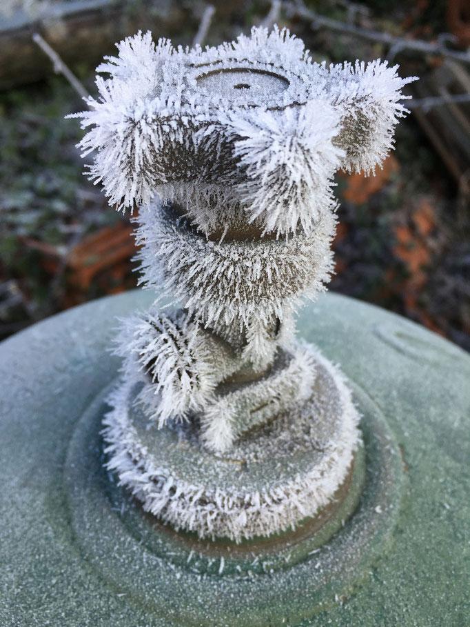 Non, cette bouteille de gaz n'est pas poilue... Elle a juste un peu froid © Michel LAURENT (MichL)