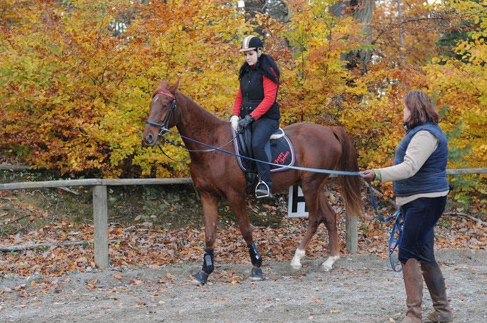 Herbst 2010 - Unser erster Ritt
