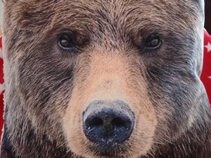 Der große Bär wacht über die Bärenhöhle
