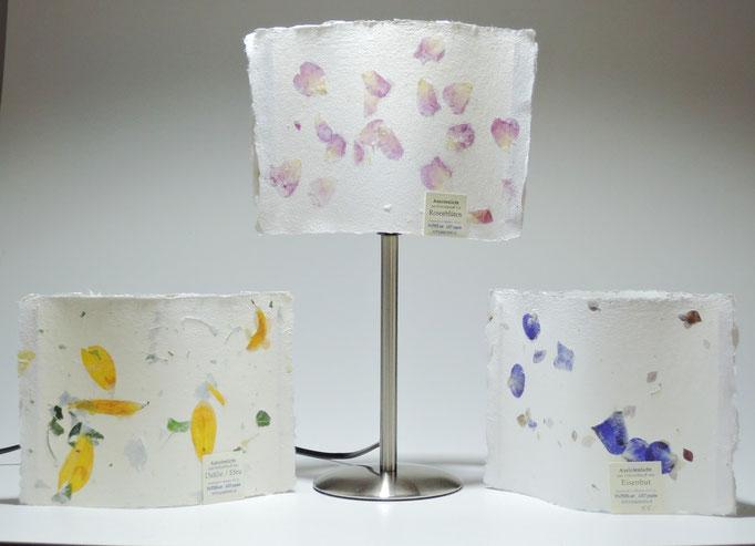 Auriolenlichter und Auriolenlampe