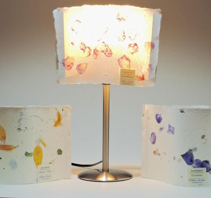 Auriolenlichter und Auriolenlampe beleuchtet