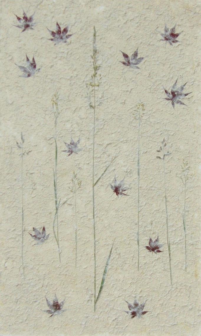 Kozo mit Gräseren und japanischem Ahorn (Detail)