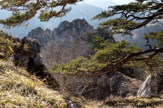 Felsen, Oberes Donautal