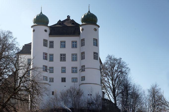 Schloss in Mühlheim an der Donau