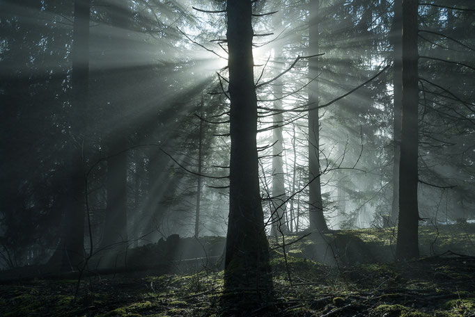 Crepuscular rays, Strahlenbüschel, Chasseral, Bern