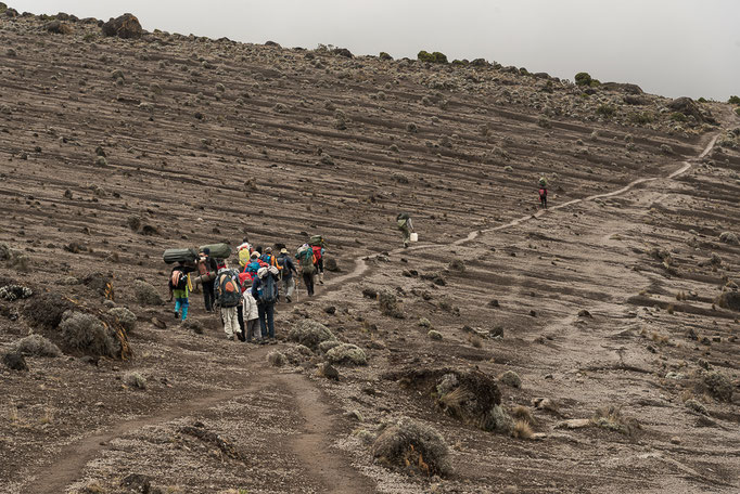 Lava field, Kilimanjaro; Lavafeld am Kilimandscharo