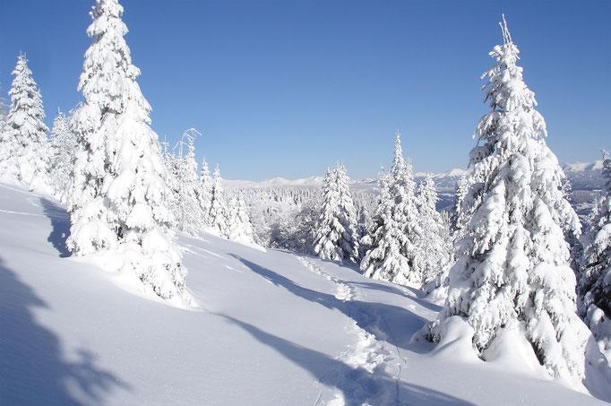 Spuren im Schnee Grebenzen