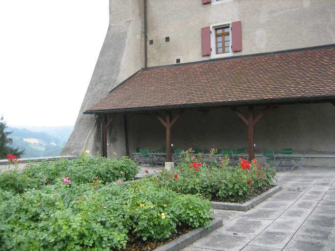 Rosengarten beim Luternauturm