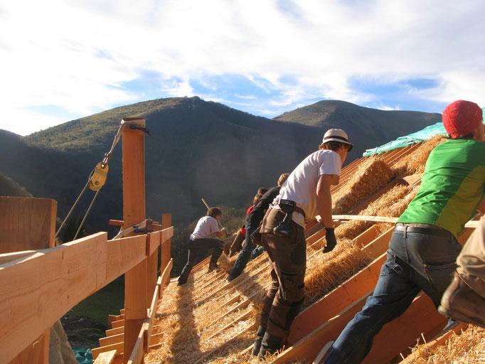 Etude critique d'un système constructif bois-terre-paille adapté a l'autoconstruction accompagné - Collaboration SB Ecoconstruction