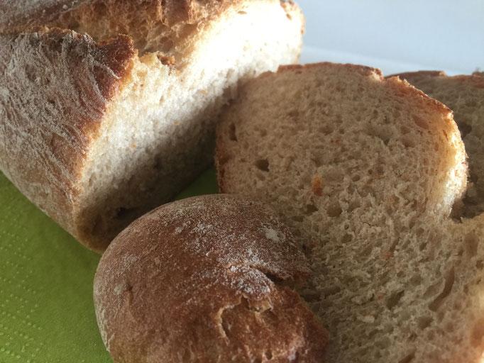 Bio Dinkel Brot auf Langeoog