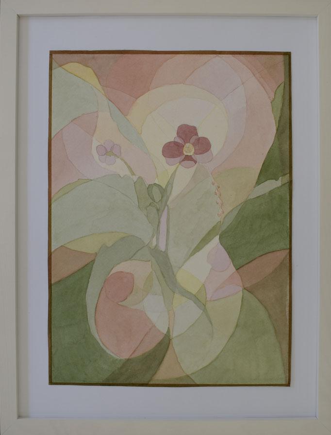 Veilchen (Viola), 42,5 x 32,5 cm.