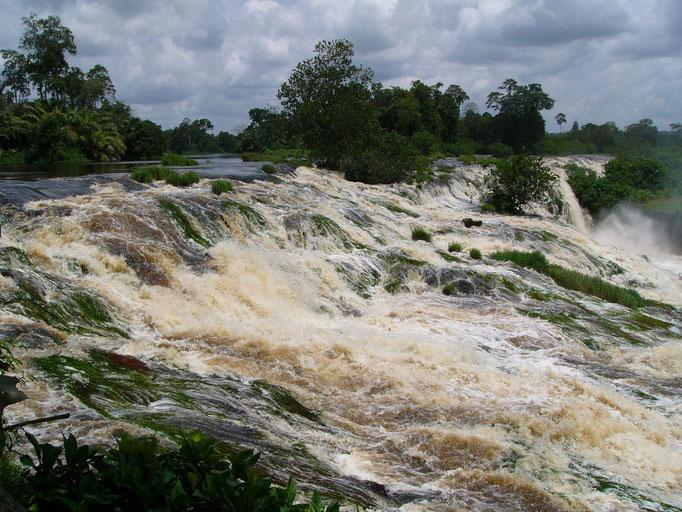 Ivindo rivière